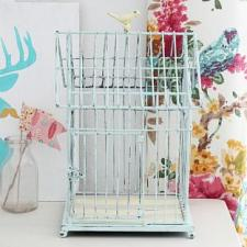 Chalky Finish Bird Cage