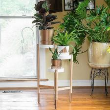 Metallic-Dipped Plant Stand