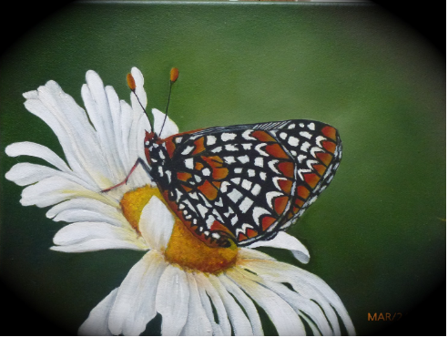 Daisy and Butterfly Canvas Painting