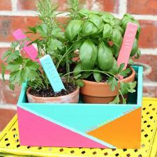 Birght Herb Planter Box by Giggles Galore