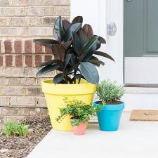 Colorful Spring Planters