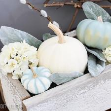 Decorative Mini Pumpkins