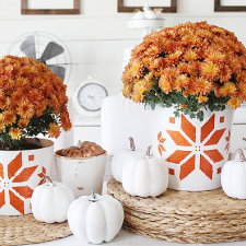 Scandinavian-Inspired Fall Terracotta Pots