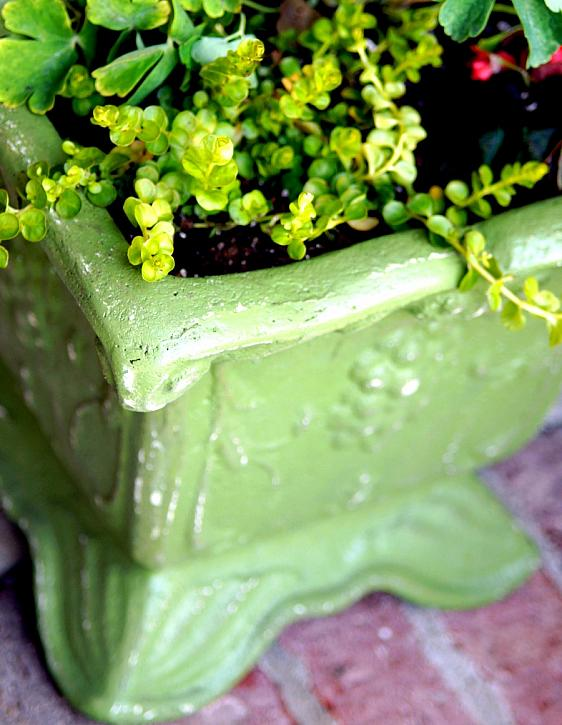 Instruction #10 - rustic-green-planter
