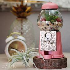 Vintage Gumball Machine Planter by Kristy Robb