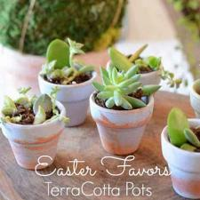 Easter Party Succulent Favors
