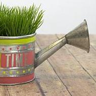 """Grow Time"" Watering Can"