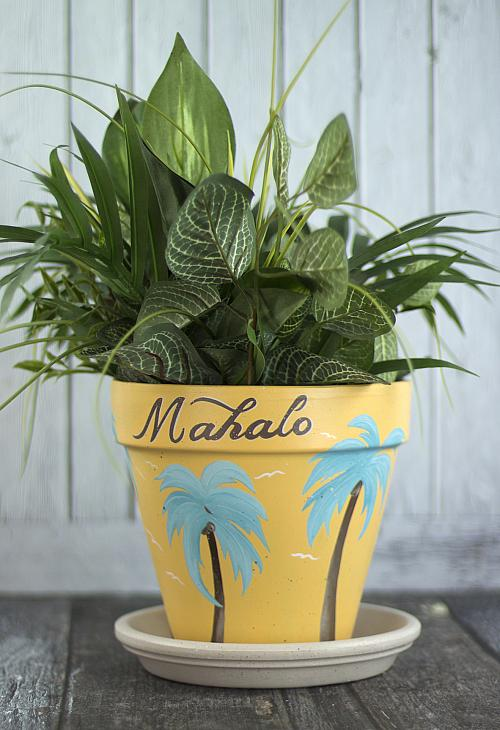 Tropical Hawaiian Clay Pot And Saucer Project By Decoart