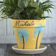 Hawaiian Clay Pot