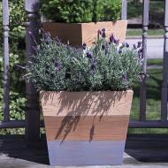 Mod Color Stained Planters