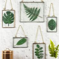 Faux Pressed Leaves