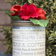 Succulent Tin Can