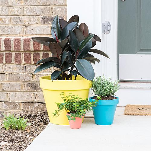 Colorful Trio of Planters for Spring