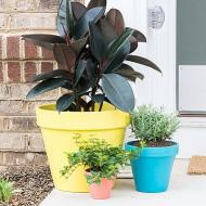 Colorful Planters for Spring