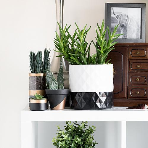 Hygge Inspired Cozy Modern Dipped Planter