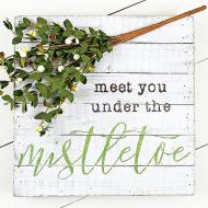 Meet You Under the Mistletoe