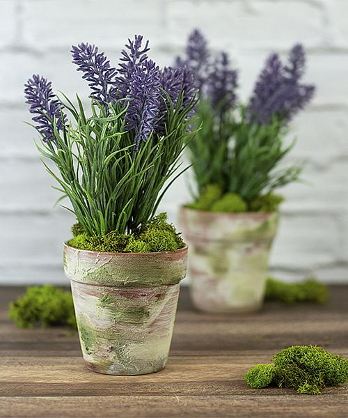 French Country Terra Cotta Pots