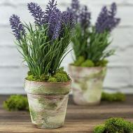 French Country Pots