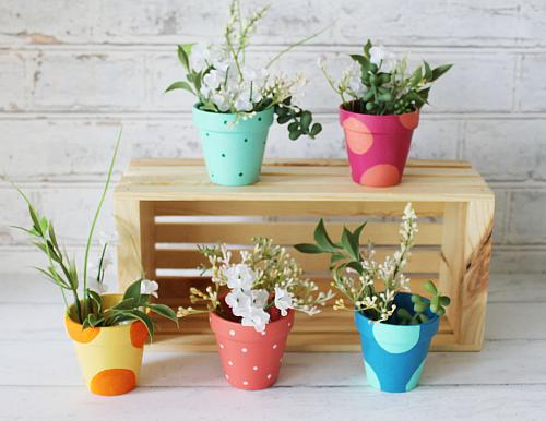 Rainbow Colored Polka Dot Pots