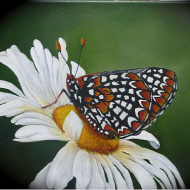 Daisy and Butterfly Painting