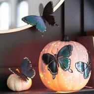 Iridescent Butterfly Pumpkin