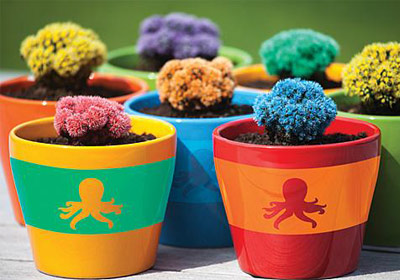 Bright Stenciled Octopus Pots